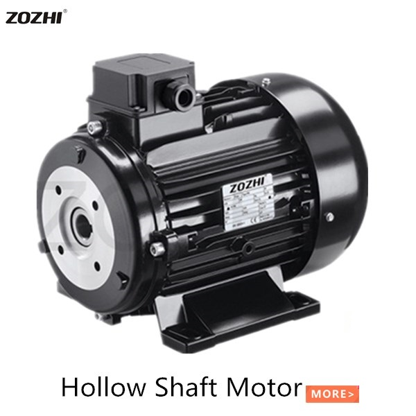 HOLLOW SHAFT MOTOR